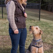 Drop the Leash, Dog Training Video