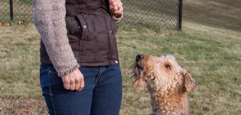 Drop the Leash, Dog Training Video